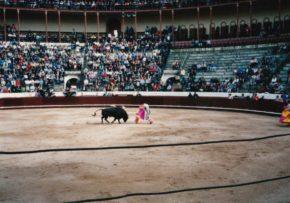 ポルトガル 闘牛