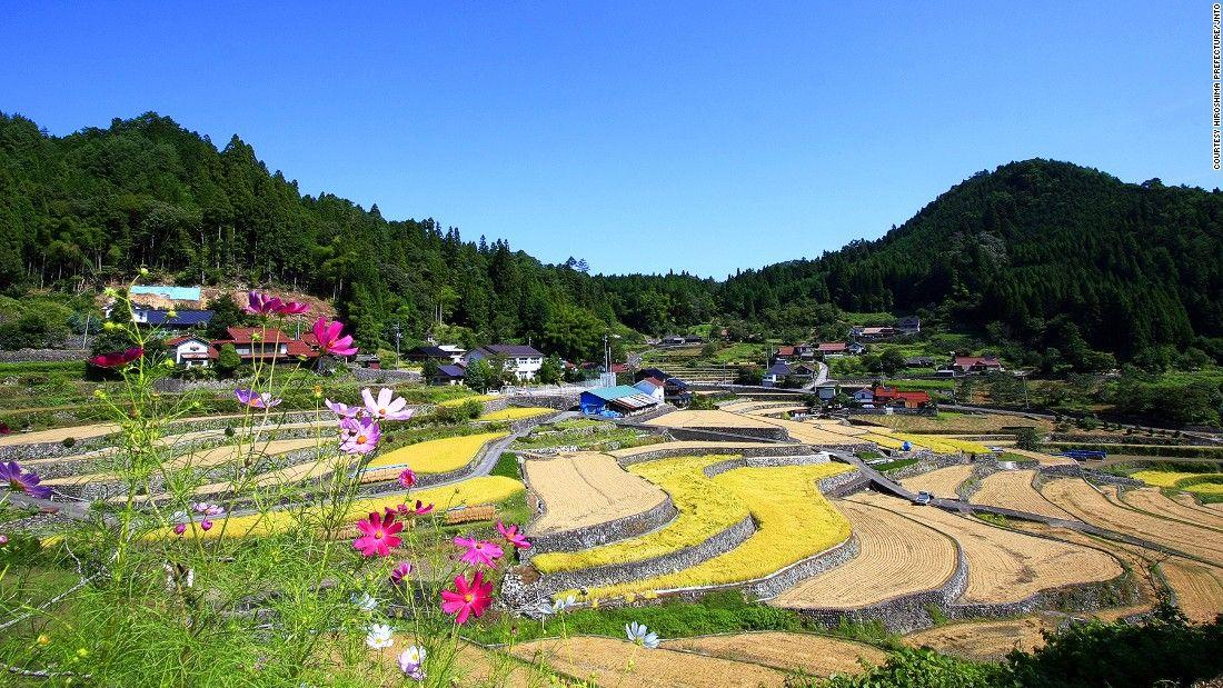 井仁の棚田(広島)