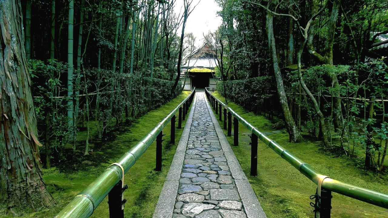 大徳寺塔頭高桐院